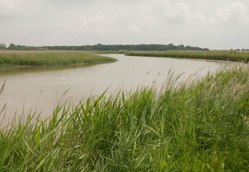 Walk from Snape Maltings to Iken